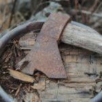 ホミニンと道具の切っても切れない関係!道具を使え得たのはホモ属だけではなかった⁈